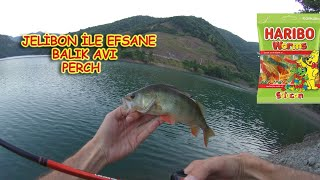 FISHING WITH HARİBO JELİBON (LRF PERCH)