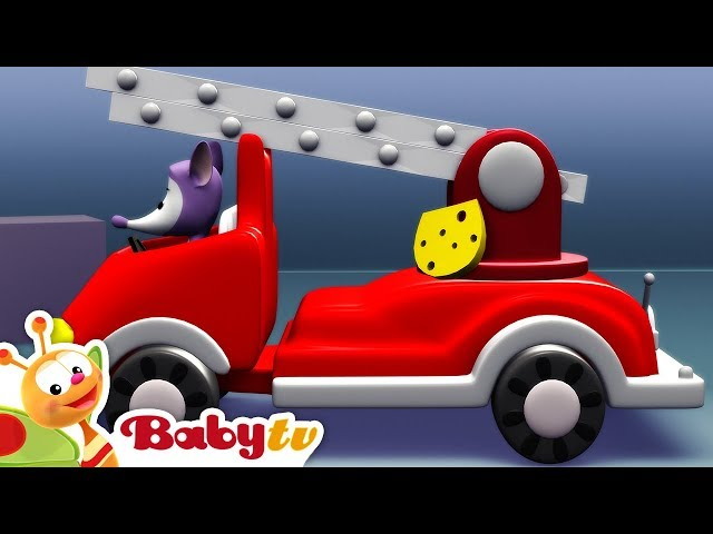 Animal Song Collection | Nursery Rhymes and Songs for kids | BabyTV