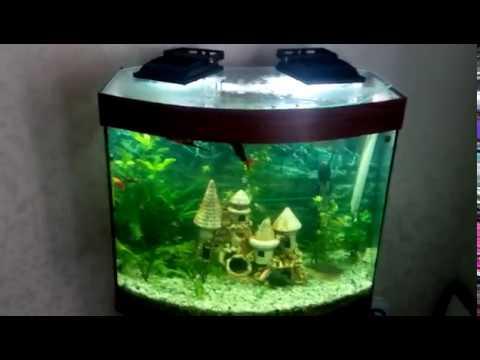 Самодельный фильтр для аквариума