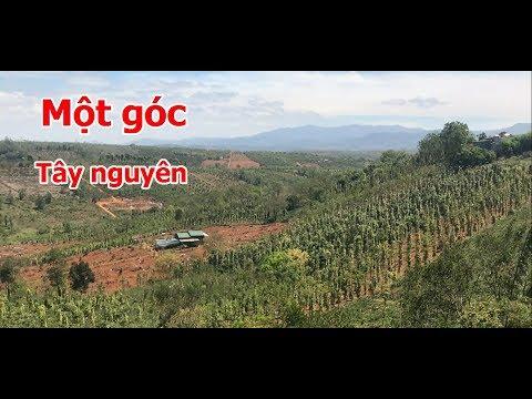 Một góc đất đồi Tây Nguyên tại Đăk Song, Đăk Nông