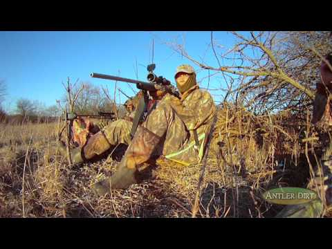 Coyote Hunting Action, Kansas Style (#119) @GrowingDeer.tv