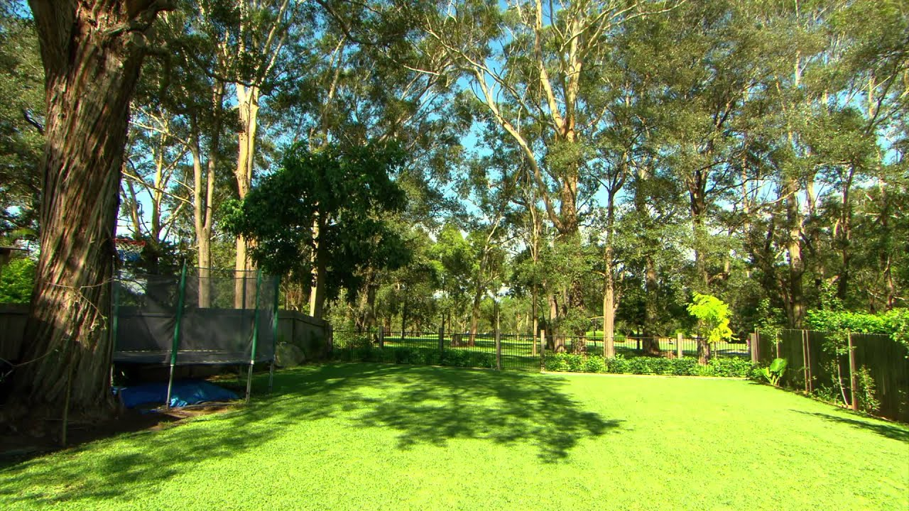 aussie backyard wallpaper youtube