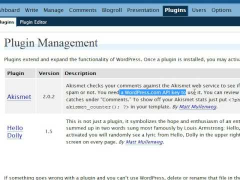 Eliminate WordPress Blog Spam with the Akismet Plugin