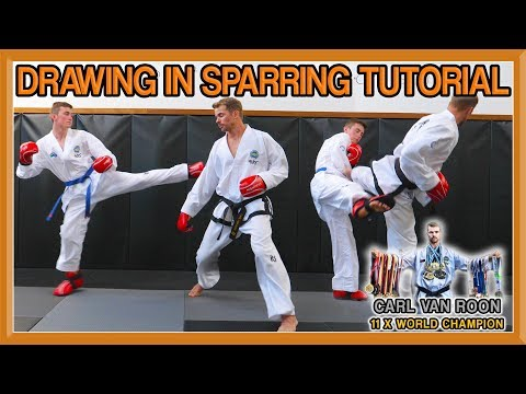Taekwondo Sparring | How to Draw an Opponent | Van Roon Tutorial