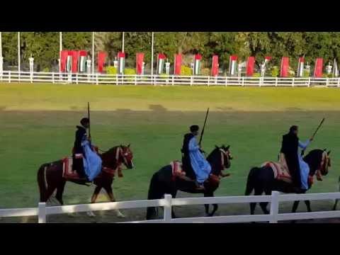 Abu Dhabi Equestrian, Moroccan Heritage Week 2015
