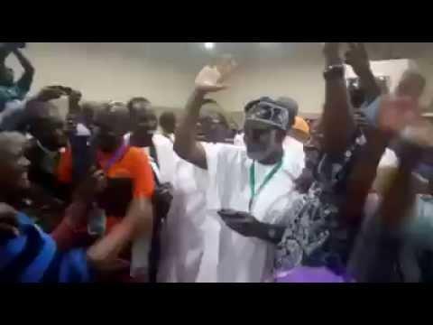 Tinubu defeated in ondo apc primary election
