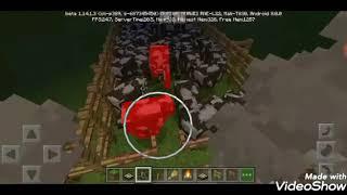Thử thách giết 1000 con bò bằng lửa trại