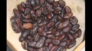 Mp3 - La semilla marrón y los sueños dorados por Gerardo Vivas Pineda