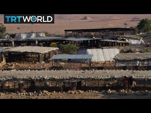 Palestine Bedouin Villages: Palestinian Bedouins Challenged By Israel