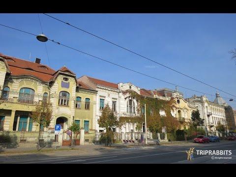 European Avenue street (Osijek)