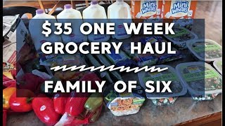 $35 Weekly Grocery Haul | Feeding a Family of 6 on $200 a Month