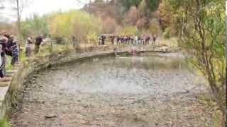 Výlov rybníka u bývalého Lipnického pivovaru