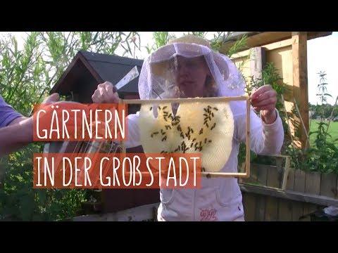 """Draufsicht - """"Urban Farming""""  ( Staffel 3, Folge 2)"""