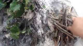 My Juniper Creek Hike - Float Thumbnail