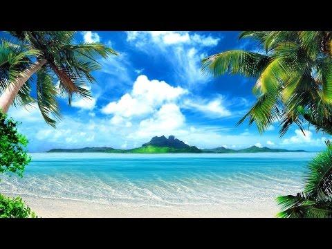 Tropical Island Music - Palm Tree Beach