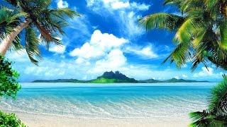Video Tropical Island Music - Palm Tree Beach download MP3, 3GP, MP4, WEBM, AVI, FLV Juni 2018