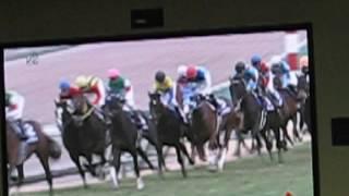 2015年 有馬記念 ウインズ津軽