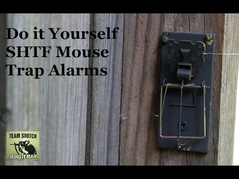Two Diy Mouse Trap Alarms For Shtf Youtube