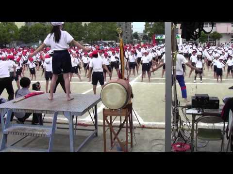 Đồng diễn cả trường trong ngày hội TDTT của tiểu học (Nhật Bản)