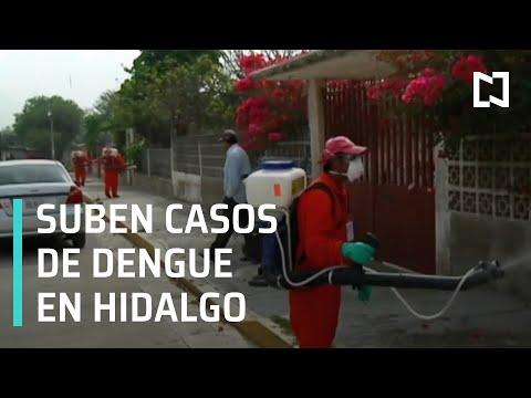 Suben casos de dengue en Hidalgo - Las Noticias