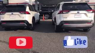 2019 Rav4 Limited Hybrid vs. XSE Hybrid | You Decide | First Look Walkaround