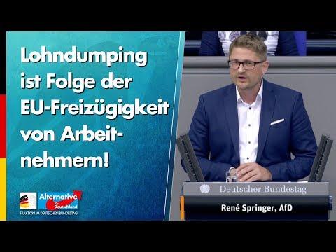 Lohndumping ist Folge der EU-Freizügigkeit von Arbeitnehmern! - René Springer - AfD-Fraktion