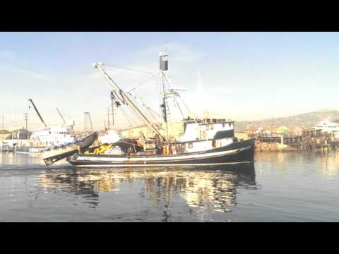 Terminal Island, Los Angeles, CA   Commercial Fishing boats