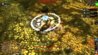 Azgaz - Nerf Druids (Vanilla WoW Druid PvP)