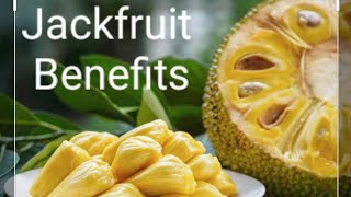 Benefits of Jackfruit- Fruits and importance - State Fruit of Kerala and Tamil Nadu - Largest Fruit