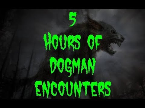 5 Hours of True Dogman Encounters (Rebroadcast Edition)