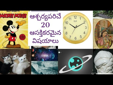 20 Amazing Facts In Telugu || ఆశ్చర్యపరిచే 20 విషయాలు || Interesting Facts || Skydream Tv ||