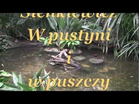 W pustyni i w puszczy, rozdziały 23-24 Henryk Sienkiewicz,audiobook - videobook