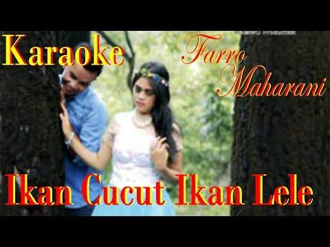 Karaoke Ikan Cucut Ikan Lele Farro Simamora Ft Maharani. By Namiro Production. Lagu Tapsel Terbaru