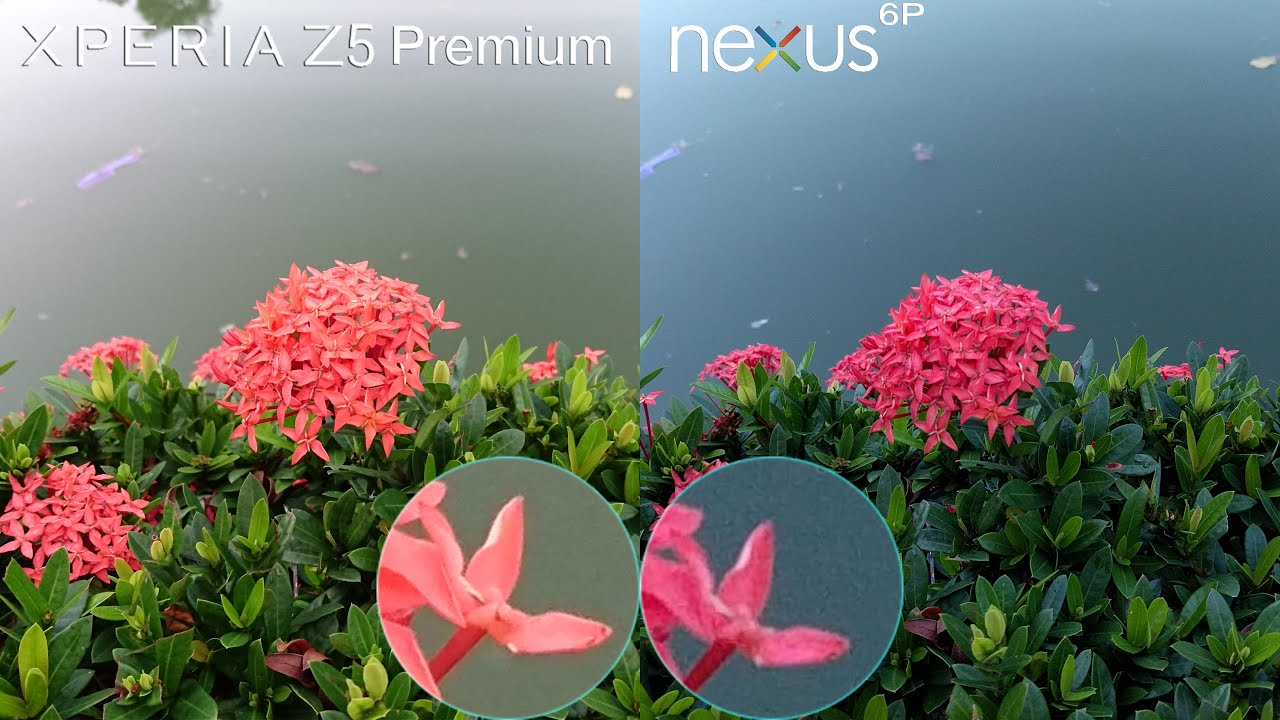 Màu sắc sống động, tự nhiên của SOny Xperia Z5