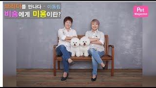[브리더를 만나다] 비숑프리제 - 이동림] 2편, '비숑에게 미용이란?'  | Introducing Bichon frise breeder. 2