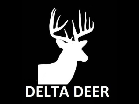 Deer Hunting During The 2019-2020 Season In The Mississippi Delta