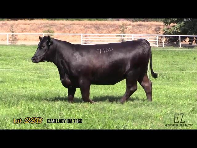 EZ Angus Ranch Lot 23B
