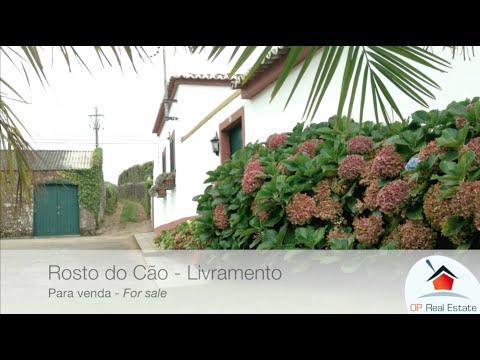 Quinta do Cavaco - Livramento (para venda)