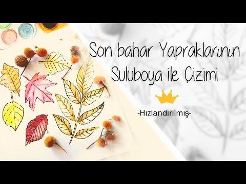 Sonbahar Yaprakları Nasıl çizilir Suluboya Fatofotofantv