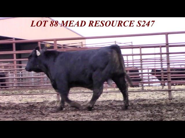 Mead Farms Lot 88