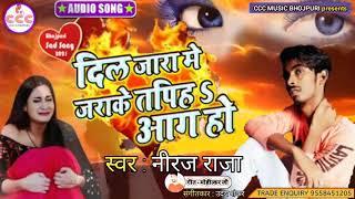 niraj raja | dil jara me jarake tapih aag ho | दिल जारा में जाराके तपिह आग हो | haitec bhojpuri sed.