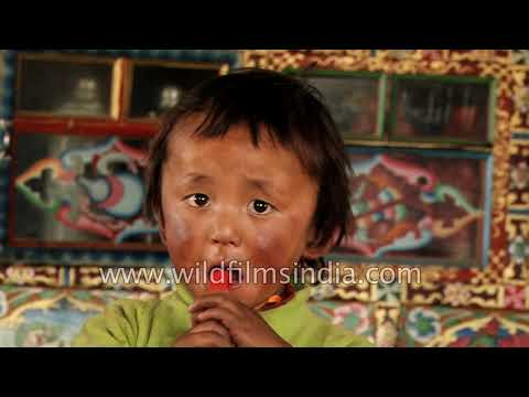 Cute Tibetan kid at food joint in Zhangmu, Tibet Autonomous Region of China