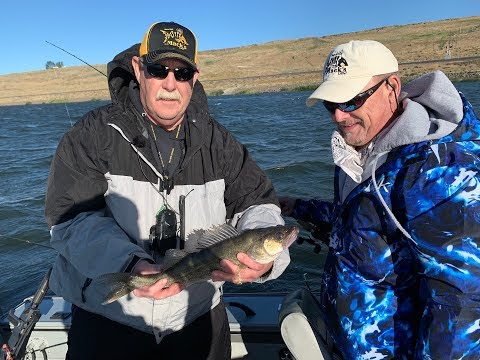 Columbia River Walleye, Perch, Catfish & Smallmouth: Upcoming Episode