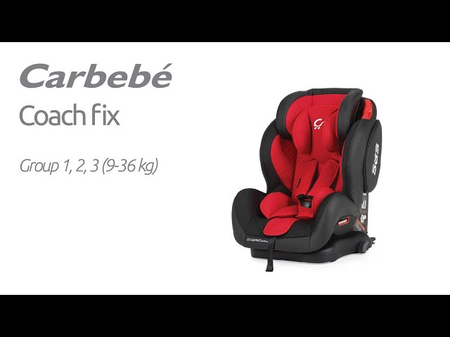 Carbebé | Coach fix