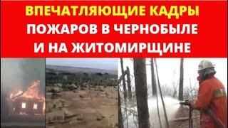 Впечатляющие видео пожаров в Чернобыле и в Житомирской области / Фраза