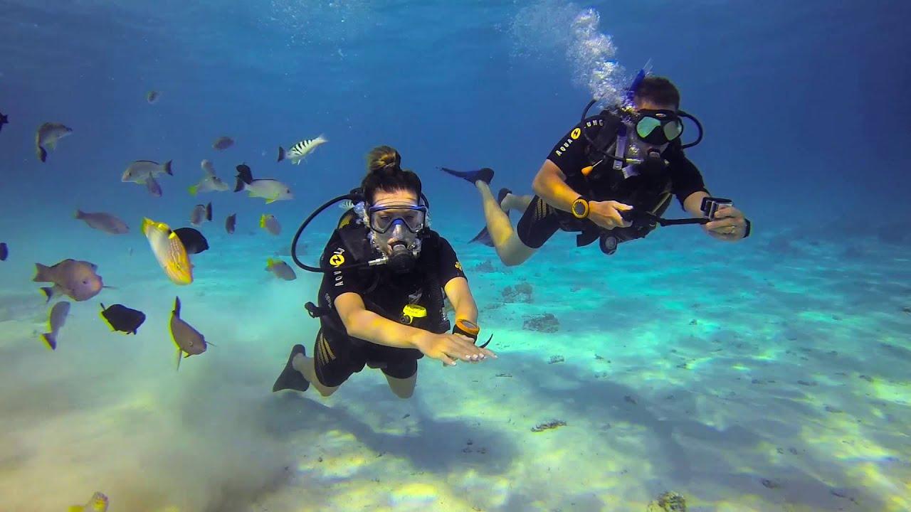 Scuba diving in Bora Bora and Tahiti - YouTube