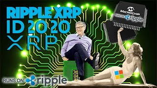 Ripple XRP: A DEEP DIVE Into Bill Gates, ID2020 & A Cashless Society With A Ripple Connection