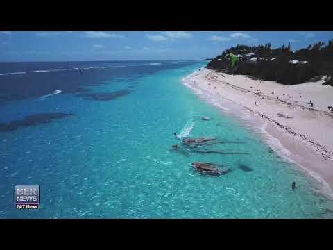 Aerial | Kites Flying On Good Friday, April 19 2019