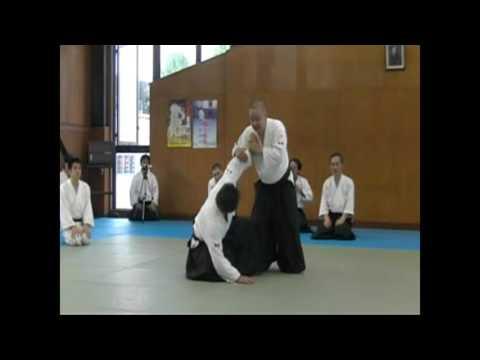 IWAMA STYLE AIKIDO Okayama Aiki Shuren Dojo H29.5.20-21