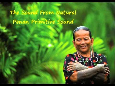 The Sound From Natural - Penan Primitive Sound (Sarawak Sape)